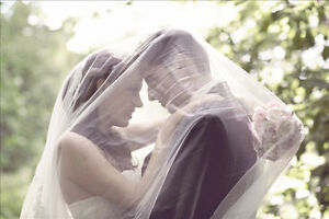 CATHEDRAL LACE TRIMMED VEIL