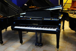 Yamaha Grand Pianos Reduced to Clear - Last Two Must Go!