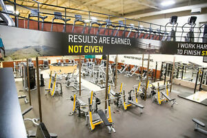 Gold's GYM Membership Take Over