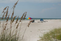 Special Waterview Beach St.Pete Clearwater Sand Sun