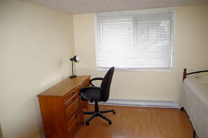No lease - $450 - Downtown Hull - Large room - Available now