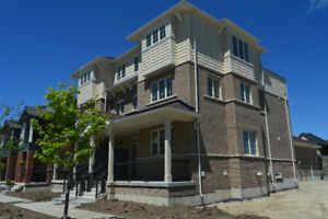 Brand New 2400 SQ FT Townhouse for Rent in North Oshawa