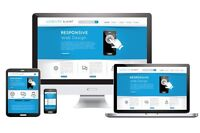 Looking for a professional custom website for your company?