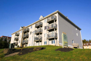 2 bedroom apartment to rent near STU and UNB 1st March