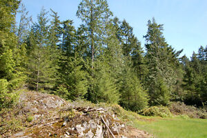Large Sunny Lot on Bowen Island - 1580 Evergreen North Shore Greater Vancouver Area image 5