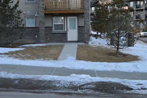 Lake View Walk-Out Basement for rent