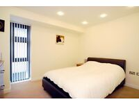 Beautiful 1 bed room apartment
