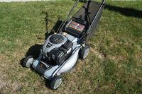 "Gas Lawn Mower: 19"" Canadiana 550ex Series Push Mower"