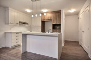 Appartement  style condos neuf, 5 ½ , Longueuil