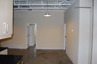 STUNNING LOFT 4 BEDROOMS ALL BRAND NEW PERFECT FOR STUDENTS!NOW!