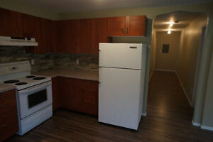 Roommate wanted for newly renovated, bright 2 Bedroom apartment