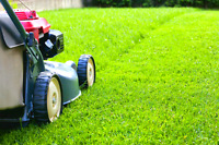Lawn and yard care