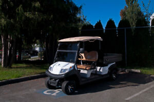 NEW AGT Zephyr 2HCX Electric Cart - RSC Custom Golf Carts