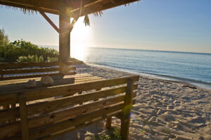 Luxury Beachfront 5 bedroom on Grand Bahama Island - Car Incl.