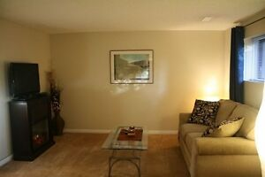 Newly renovated large 1 bedroom suite