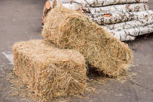 Wanted: Standard Straw Bales