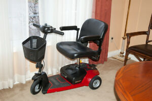 GOGO Ultra Scooter