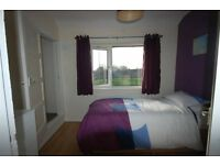 Single room **Available Now** £325pcm **All bills included + wifi**