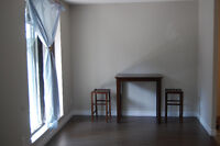 Renovated 1 bedroom apartment - St Catharines