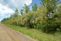 12.44 Acres of Vacant Land Just 5 min North of Sexsmith