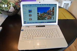 SONY VAIO laptop with Photoshop, Creative Suite, new display