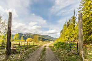 515 Holly Avenue,Sicamous -  Beautiful lake and town views