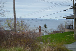 Land For Sale in Maddox Cove, St. John's, NL