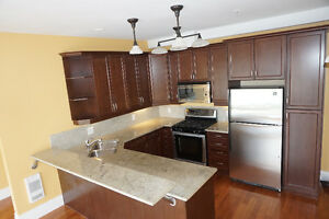 One Bedroom Condo For Sale in The Palladian