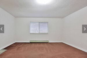 Renovated ground level two bedroom suite for rent