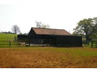 Stable & grazing to let - East Bergholt