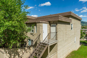 #58 3800 40th Avenue, Vernon - Centrally located 1 bdrm & loft