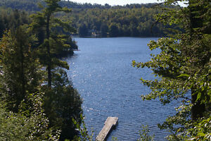 Waterfront Cottage - Lac Clair - Val-des-Monts