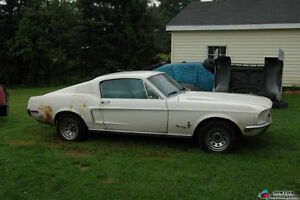 Wanted 1965-1970 ford mustang fastback any condition