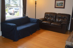 Sofa Bed & Loveseat
