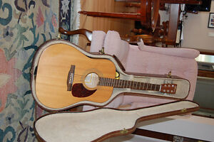 Norman acoustic guitar with hard lined case