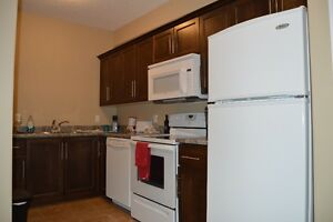 Kincardine Downtown Waterview 1 Bedroom Apartment