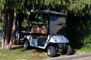 2017 AGT Hobbit 2+2 Silver Electric Car - RSC Custom Golf Carts