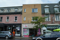 Great Investment 4plex in Montreal Down Town
