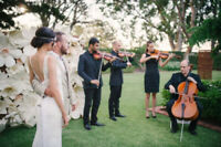 Professional Violinist Available for Wedding Quartet