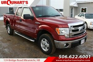 2014 Ford F-150 XLT! LOW KMS! MINT!