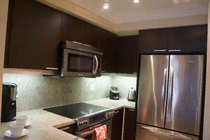 1 bedroom luxury furnished condo for short term rent at Bayview London Ontario image 4
