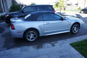 1999 Ford Mustang 35th Anniversary Limited Edition Convertible