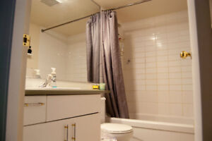 Looking for a roommate in a 2-bedroom apartment (mount pleasant)