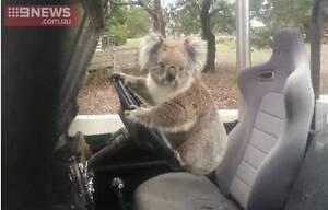 Alice Springs Travel mate Adelaide CBD Adelaide City Preview