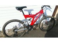 2X Dunlop mountain bikes