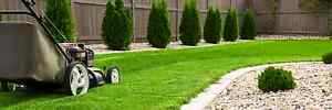 Affordable lawn mowing & Hedging Leppington Camden Area Preview