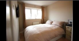 Spacious Ensuite Double Room Available