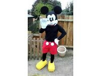 Mickey Mouse Costume to rent
