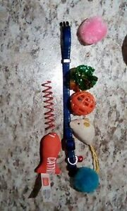 CAT COLLAR AND TOYS