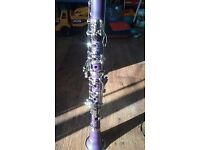 purple clarinet